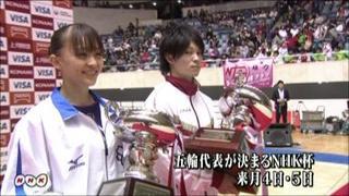 体操全日本.jpg